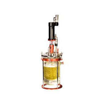 Mini Bioreactors