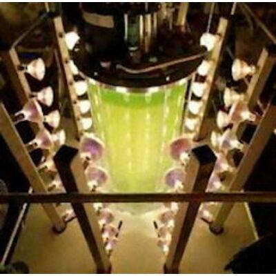 Photo Bioreactors