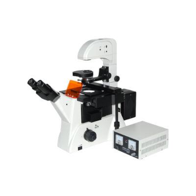 Fluoreszcens mikroszkóp - XDY-2